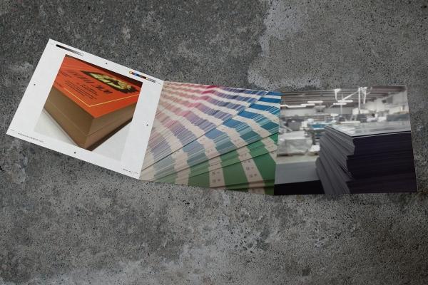 MockUp-TriFold-Square-copia